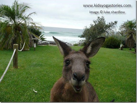 Australia in Action: A Yoga World Culture Tour for Kids (Part One) - Mama Smiles - Joyful Parenting