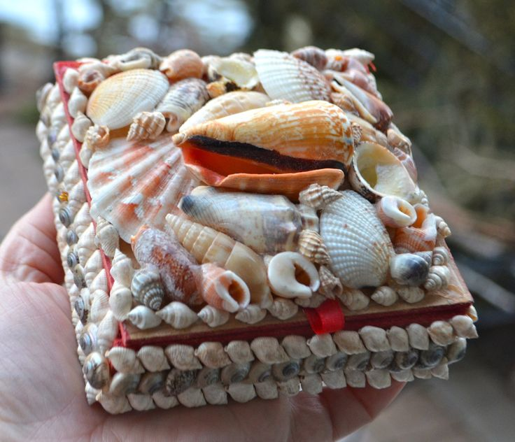SHELL Trinket Box Covered in Gorgeous Seashells Hand Crafted Jewellery Box Lined in Red Velveteen by StudioVintage on Etsy