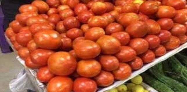 جهول شهر واسين پاران ٽماٽن جي وڌيل اگهن خلاف احتجاجي مظاهرو ڪيو ويو ان موقعي تي ميديا سان دانهيندي هنن چيو ته نيازي ج Tomato Cultivation Tomato Vegetables