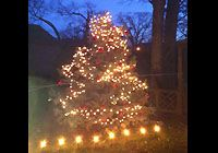 Decorate your residential property with Christmas Light installation. Scott Anderson has a wide selection of Christmas Light in a variety of colors, patterns and configurations.