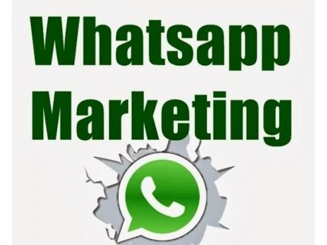 Whatsapp Promotion In India - Whatsapp Marketing software in India - Achhnera, Uttar Pradesh - Computer - Myavoo Uttar Pradesh