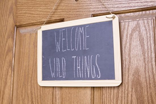 Armelle Blog: where the wild things are party ...