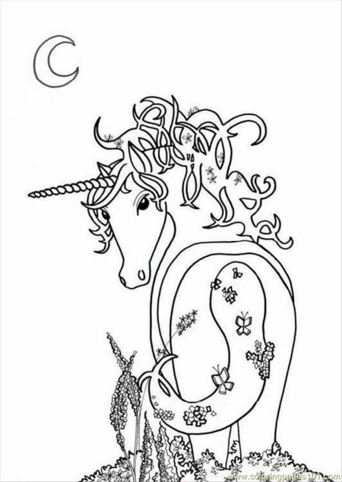 Cool Photoready Unicorn Coloring Page Explore Other Pictures To