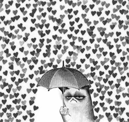 No Love u.ú