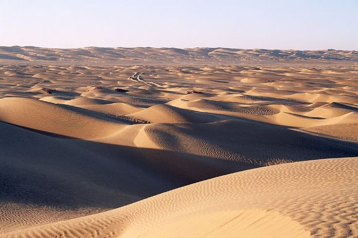 Humans accidentally created hidden carbon sink in the desert