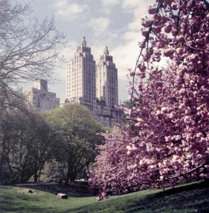 Mejores 30 imágenes de wallpaper en Pinterest | Colores pintados ...