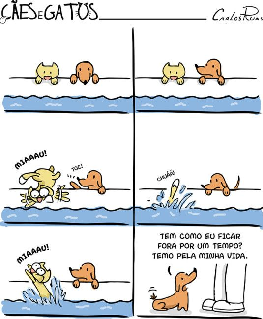 Cães e Gatos, por Carlos Ruas.