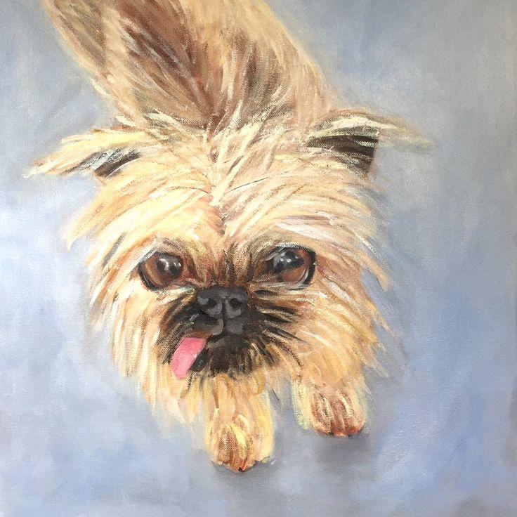 A cute custom portrait of a puppy that has sadly passed away. Now he can be enjoyed and remembered forever.