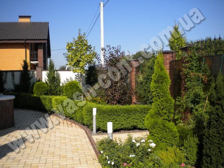 Озеленение двора в с.Петровское