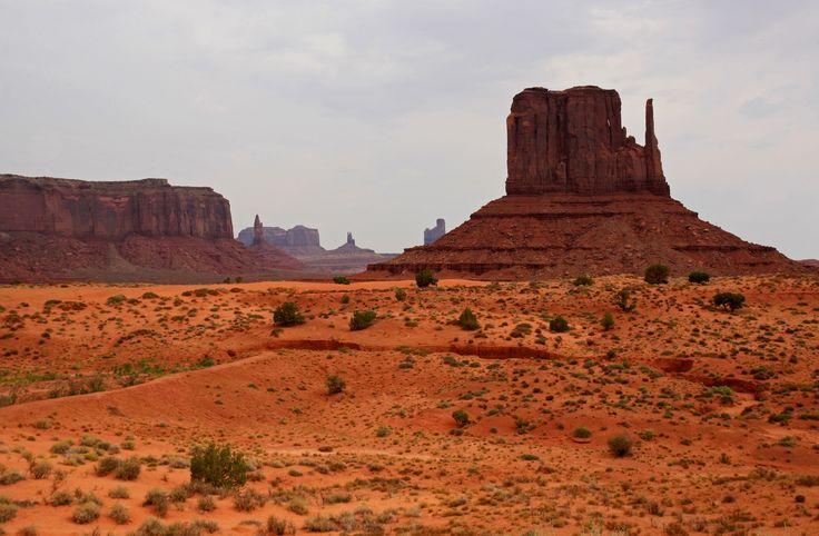 Usa 209 Nevada Las Vegas El Culto A La: Desert - Google Search