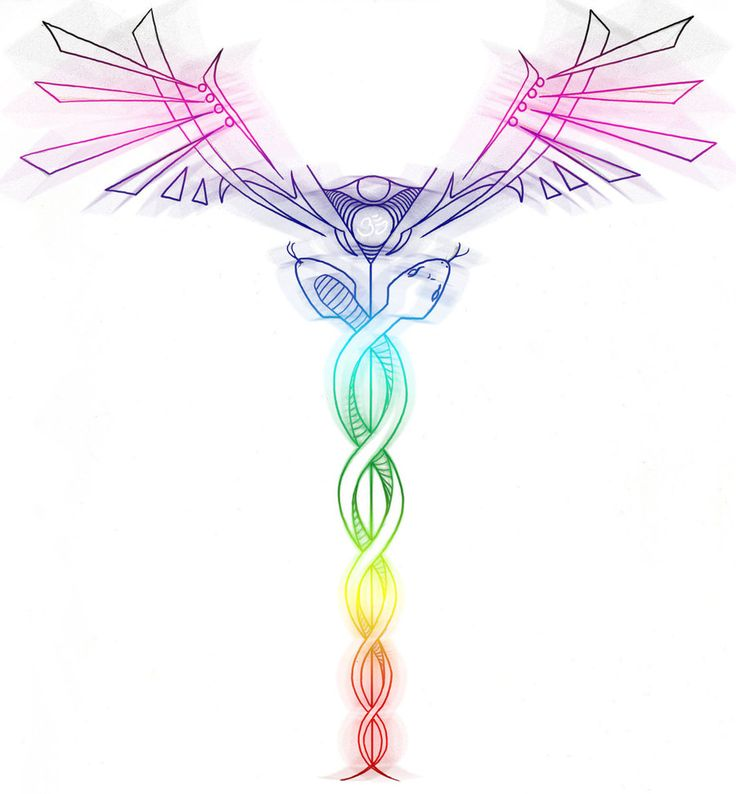 The Caduceus Is Traditionally Thought To Represent Our