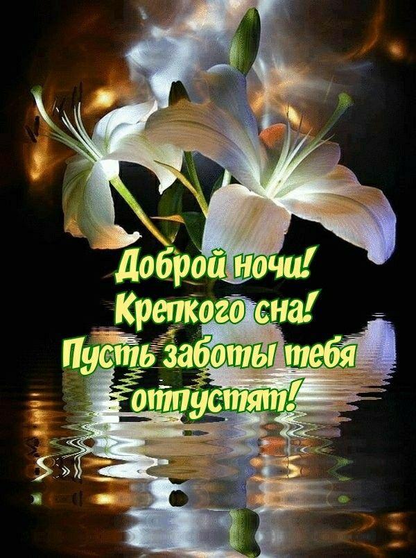 Открытки на каждый день добрый вечер и доброй ночи, днем рождения