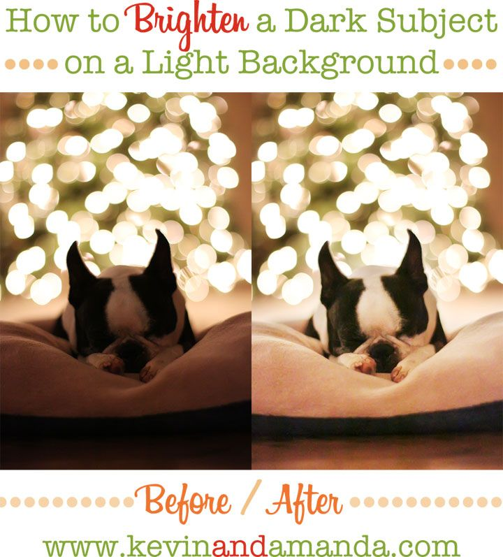 Editing Tip: How to brighten a dark subject on a light background.