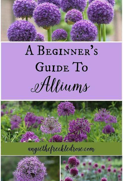 3014 best Garden Artistry images on Pinterest | Head planters ...