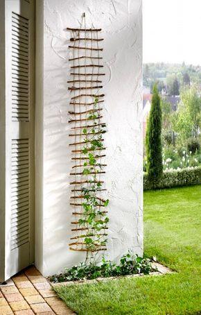 DIY Gerüst für Kletterpflanzen