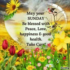 Archetypal Flame - May your Sunday be blessed     Good morning beloved souls,     May your Sunday be blessed with love, happiness and good health. Take care.     Love and Light  ˡᵒᵛᵉ ♡ ☯ ∞     Agape ke fos  ˡᵒᵛᵉ ♡ ☯ ∞      Καλημέρα αγαπημένες ψυχές,  #ARCHETYPAL #FLAME #GIFS #gif #positive #quotes #frases #φράσεις #improvement #mind #agape #love #light #fos #amor #luz #νους #βελτίωση #αγάπη #φως #θετική #σκέψη #thinking #power #like #comment #share