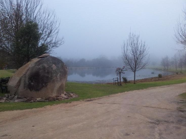 Hidden Creek Vineyard foggy June morning at 940m elevation