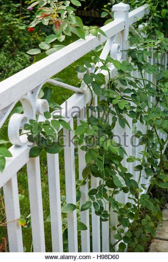 Image Result For White Wrought Iron Fencing