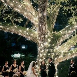 bistro light decor wedding ceremony