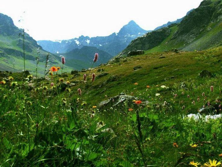 Kaz Dağları http://alanyaistanbul.com/