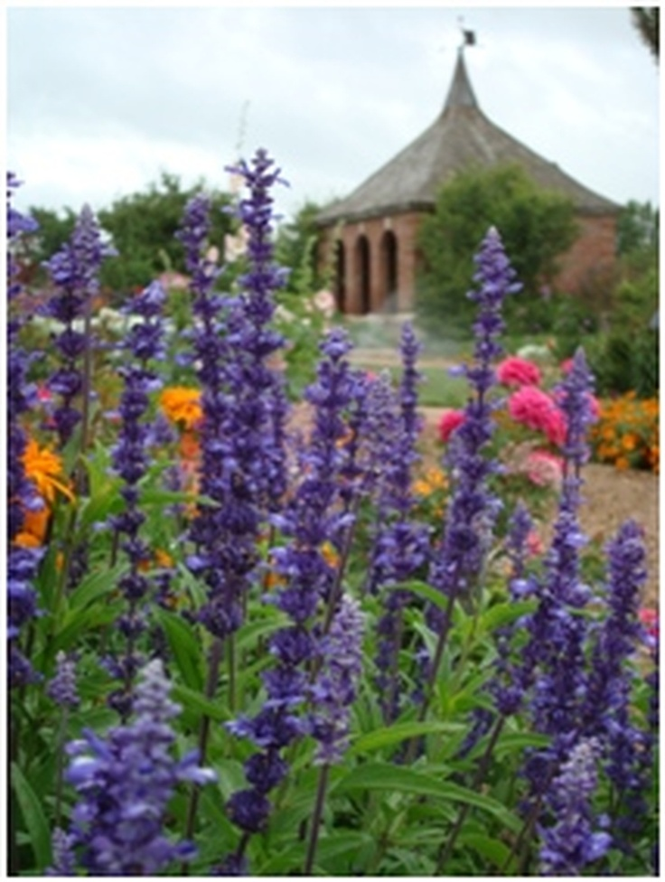 136 Best Images About Botanic Gardens On Pinterest Gardens Canada And Parks