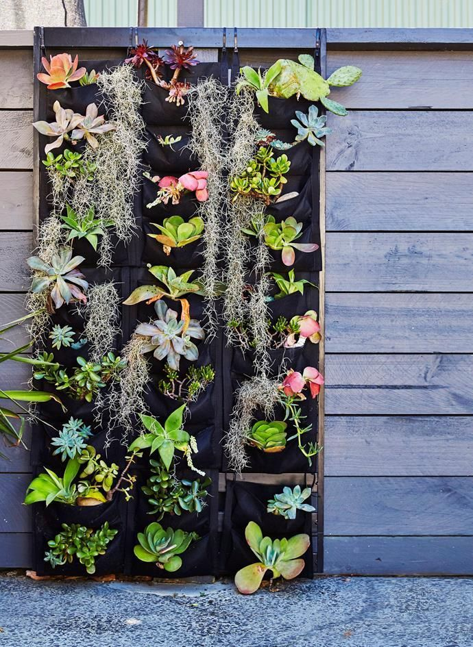 Vertical Garden Design With Gazebo Installation 41 Amazing Vertical Garden Ideas for Succulent | Garden | Garden, Vertical  vegetable gardens, Verticle vegetable garden