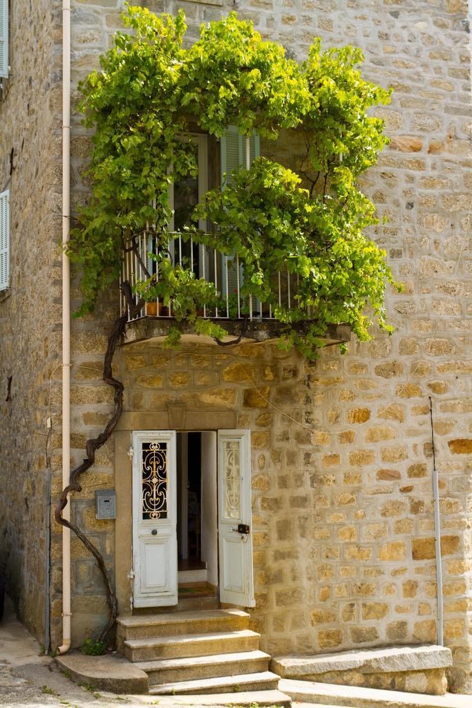 Romantic leaf shrouded balcony FloraGarden
