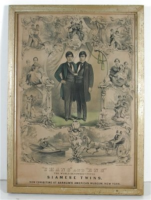 The Original Siamese Twins, Chang & Eng. 1860 poster for appearance at Barnum's American Museum.: Siam Twin, Barnum American, Siamese Twin, Barnum Museums, 1860 Posters, Circus Posters, American Museums, Originals Siamese, The Originals