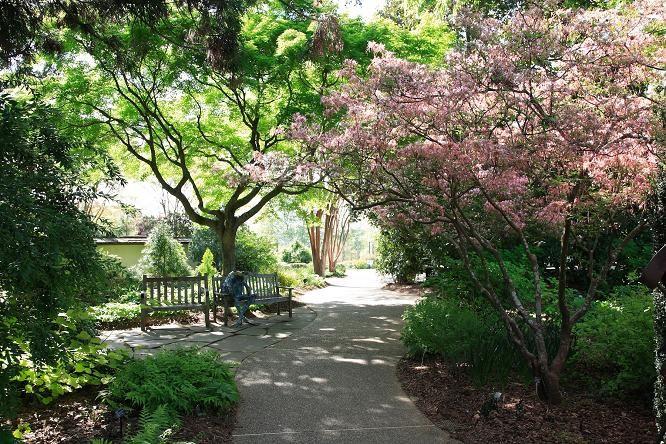 atlanta botanical garden. been here!