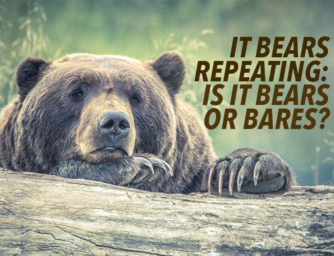 "If someone says ""it bears repeating,"" that means it's worth saying again. Remember, it's ""bears,"" not ""bares."" These images of bears might clear it up."