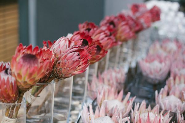 PROTEAS - Modern Pretoria Wedding by picture me - via ruffled