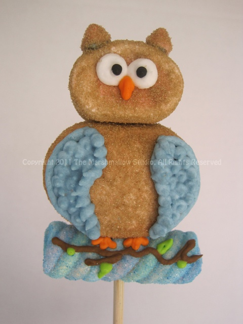 Baby #Owl #Marshmallow #Pop. Wonder if I could make these?