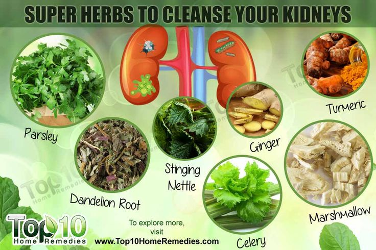 Note: Do consult your doctor before taking these herbs. They may not be suitable for people with kidney disease and other medical conditions. They may also interact with certain medications. Kidneys –bean-shaped organs located at the posterior side of your abdomen– perform very important functions in the body. They are responsible for removing toxins and …