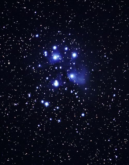 Seven Sisters , pleiades Star Cluster.  Thanks, Ginny, for bringing Seven Sisters into my here and now-