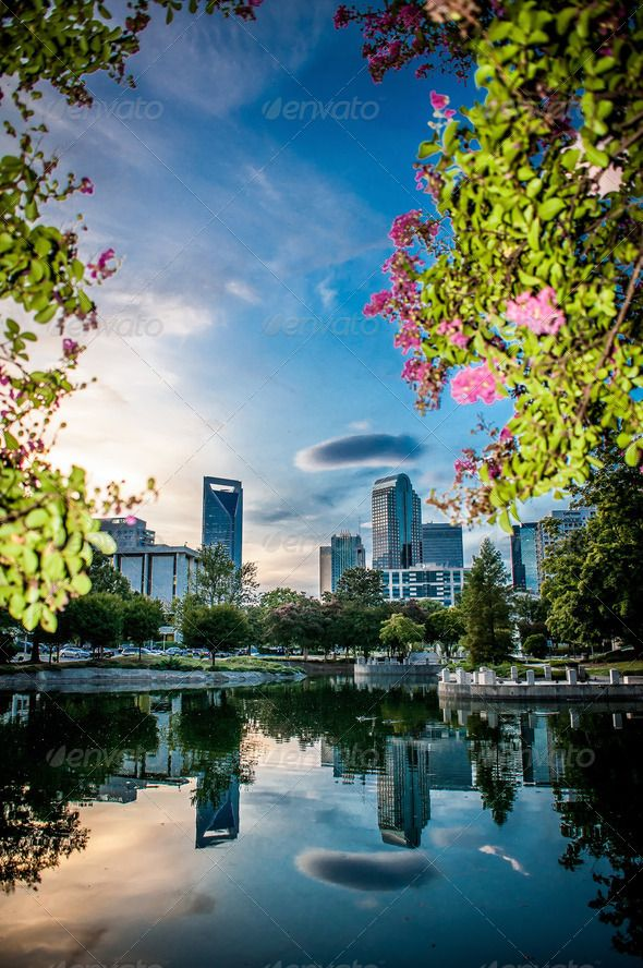 = Another beautiful view of Charlotte, North Carolina