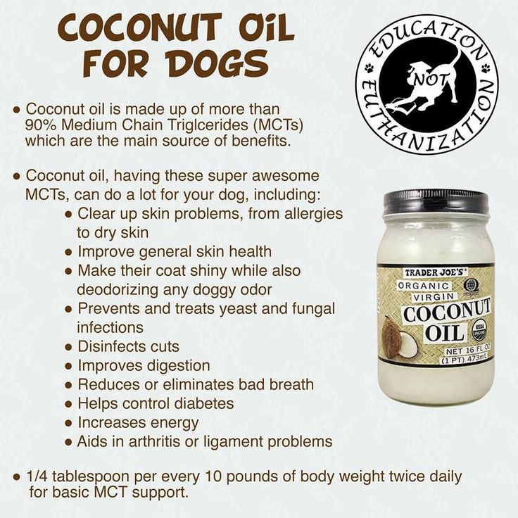 Coconut Oil Benefits for Dogs. Coconut oil benefits your dogs in numerous ways - from improving skin conditions to relieving arthritis and reducing the risks of cancer! Coconut oil can be used both internally and topically on dogs. Many health-conscience people are constantly praising all the good things coconut oil does to their health.