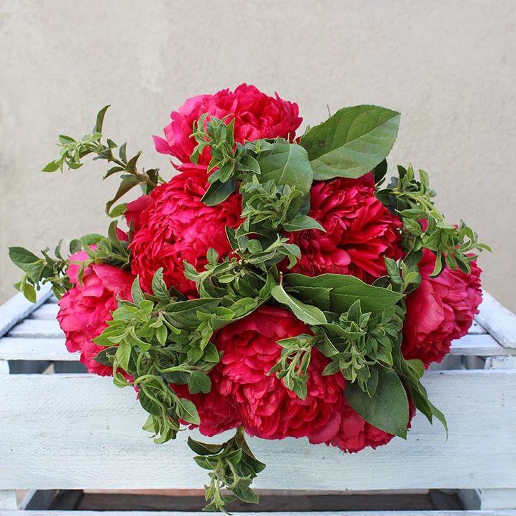 Ramo de Peonías Rojas Henry Bockstoce | Floristería Bourguignon #peony #bouquet