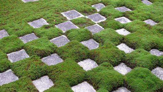京都東福寺にある方丈庭園、皆さんは建築物と同時に作られたと思っているかも しれませんが実は少し違います。 東福寺は明治十四年に火災により消失し、(仏殿,法堂、庫裏) 明治二十三年に再建されています。そして庭は重森三玲により昭和十四年に 完成されています。 重森三玲あまりなじみの無い方ですが、作庭家として有名であのイサムノグチ が教えを受けたといわれる人です。 私も、庭のデザインに関してあまり詳しくはありませんが、圧倒的なデザイン力 と抽象化のセンスには、感動と尊敬を覚えます。 今、東福寺では龍吟庵の特別拝観をしております。 出来れば、方丈庭園、龍吟庵、合わせて重森三玲氏の庭をみてください