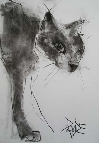 by Valerie Davide