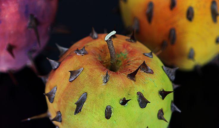 Frutto proibito 1, 2, 3 - Forbidden fruit 1, 2, 3