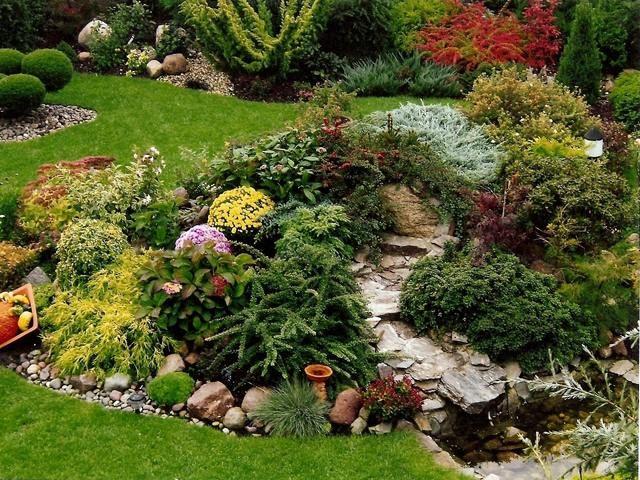 jardin de rocaille avec une végétation abondante