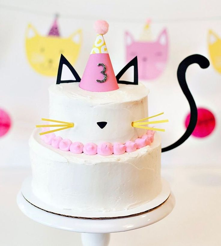 Unique Cat Party Ideas On Pinterest Kitty Party Cat - This cat eating a birthday cake is everything you need in life