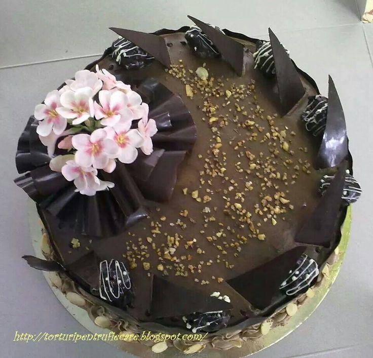 tort Alina