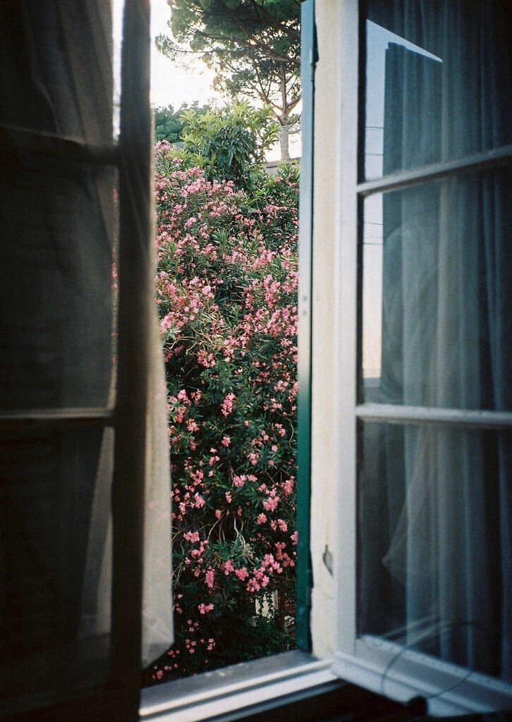 open up my window...♥