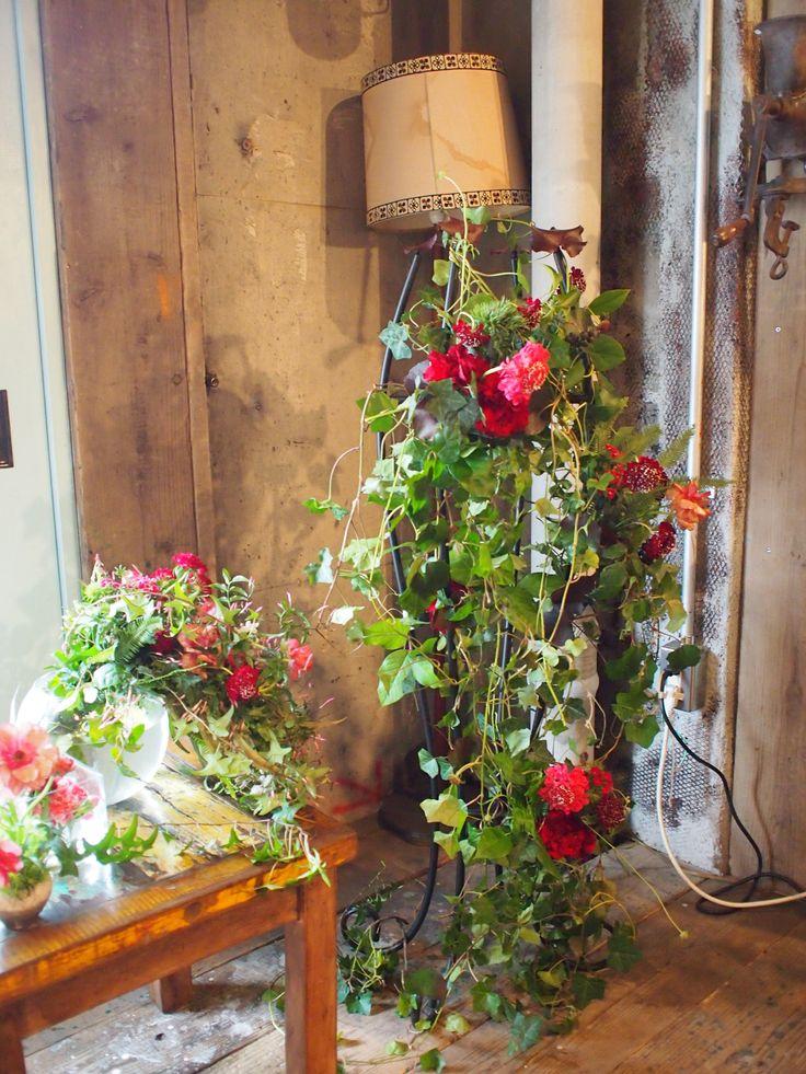 アイビーに赤の花をちらして。