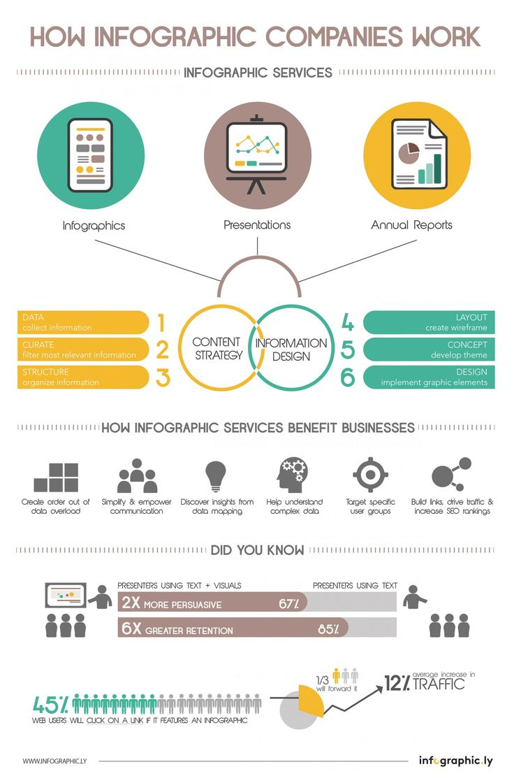 How Infographic Companies Work A Brief Visualization Of