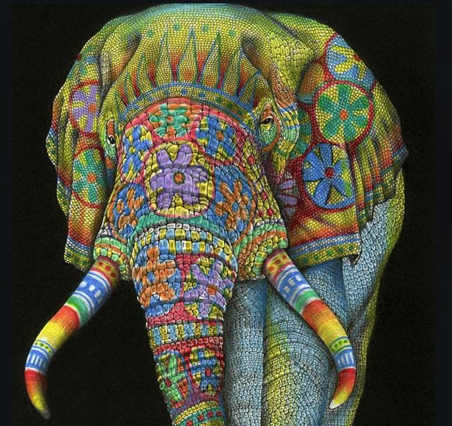 New Coloring Book : 15 best intricate ink: animals in detail coloring book by tim