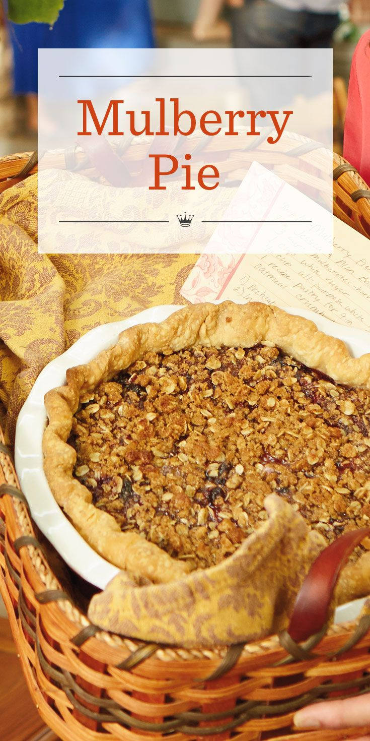 Looking for mulberry fruit recipes? This easy mulberry pie with cinnamon-sugar oatmeal crumb topping is sure to become one of your new fall favorites.