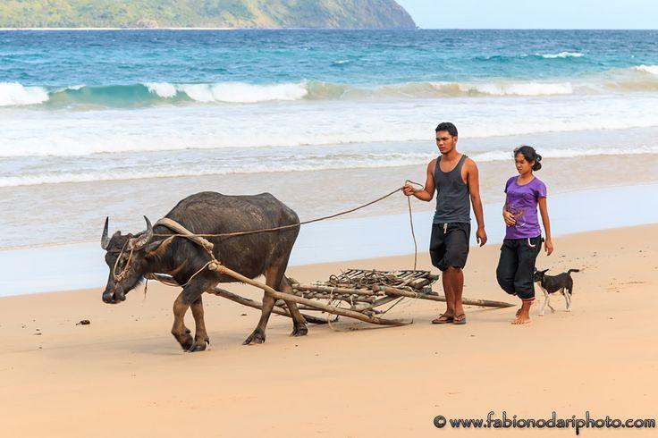 #Nacpan, #Palawan. More info here: http://www.fabionodariphoto.com/wrp/palawan-isola-piu-bella-del-mondo/