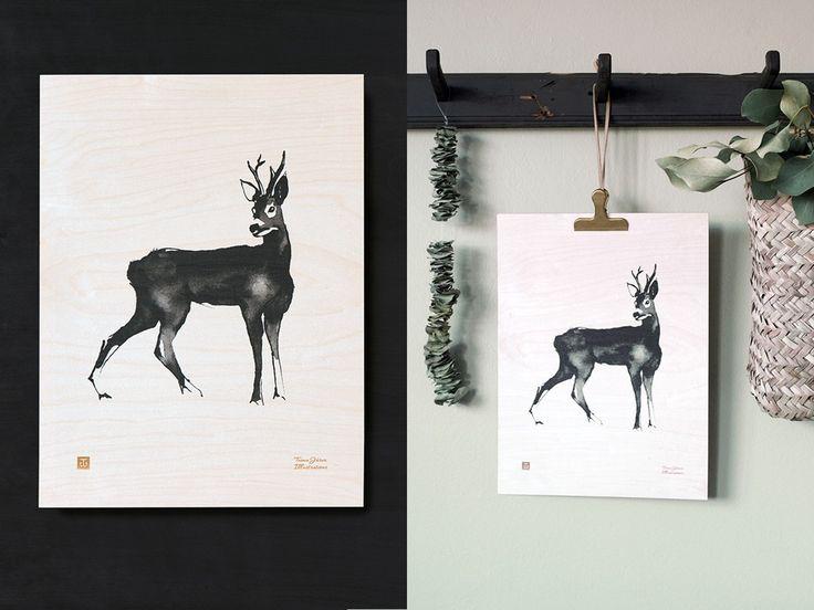 Kauris Vanerijuliste - Teemu Järvi Illustrations